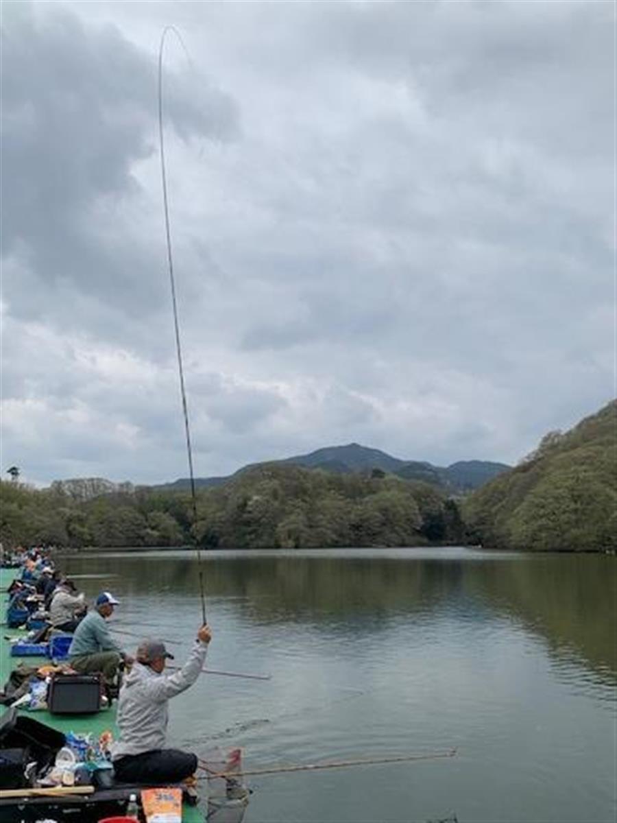 新緑のまぶしい季節。ヘラ釣りも盛期を迎える