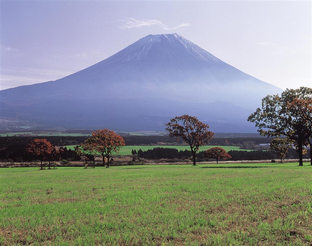朝霧高原から眺めた夏の富士山=静岡県富士宮市(県観光協会提供)