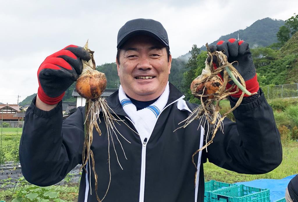 タマネギの収穫に参加し、笑顔を見せる北別府学さん=昨年6月、広島県安芸太田町(川中醤油提供)