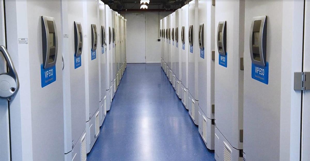 大量のワクチンを保管できるPHCホールディングスの超低温冷凍庫(同社提供)